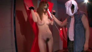 Erika Kirihara Hot Japanese model enjoys sex